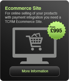 Ecommerce Web Sites