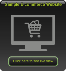 View our ecommerce system