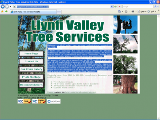 An image from Llynfi Valley Tree Services Web Site