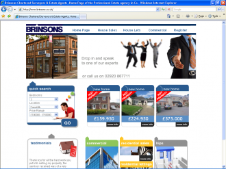 An image from the Brinsons Web Site
